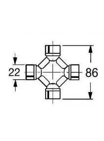 C. Homocinetica T4 22x86